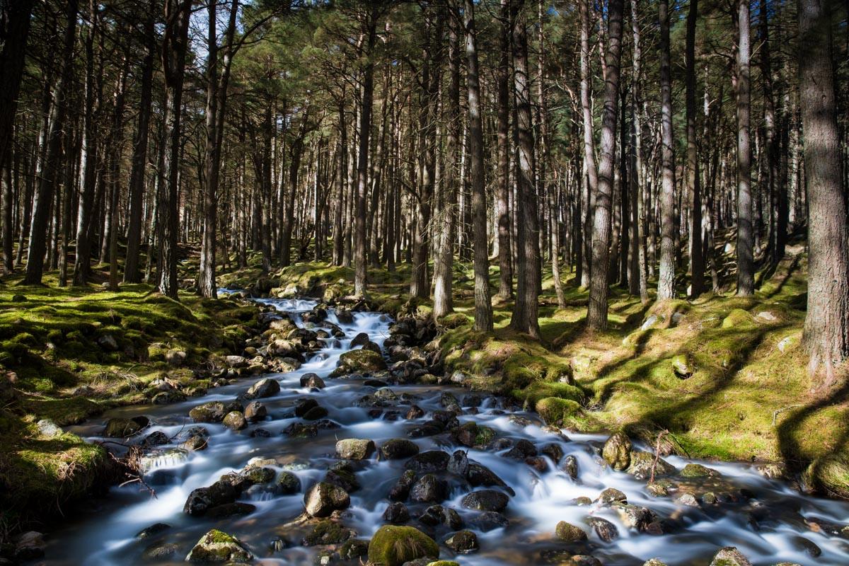 Loch Muick, Scotland. © Jan Bosch