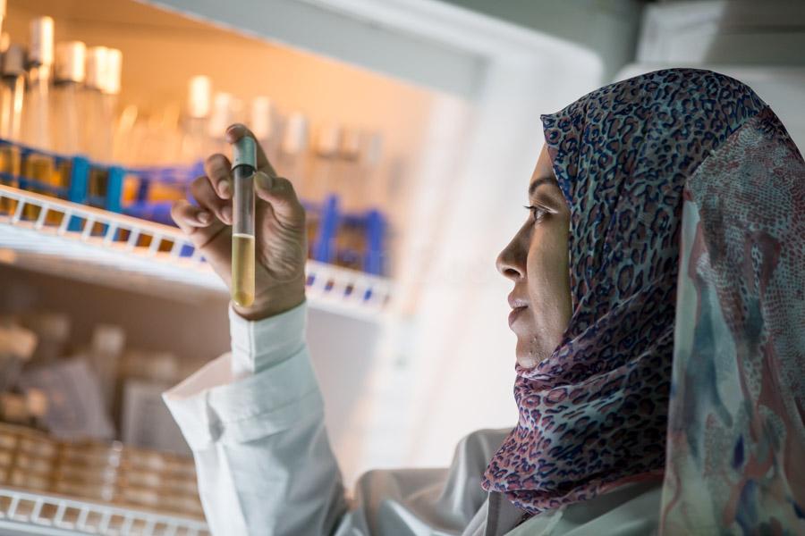 analysis of water quality at Salhayier central laboratory of Quena WWWC headquarter © GIZ/Jan Bosch