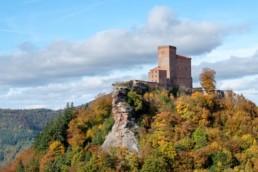 Herbstliches Wandern in der Südpfalz. © Jan Bosch/Christian Martischius