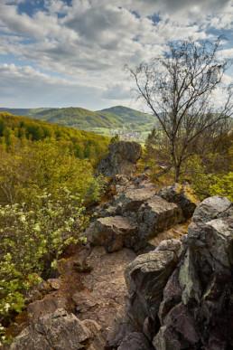 Blick auf den Rimberg von den Wichtelhäuser Steinen, Deutschland © Jan Bosch