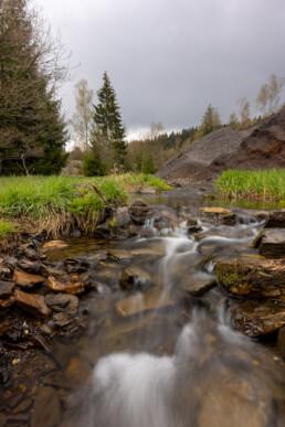 Reste der Peterzeche im Naturschutzgebiet Buchheller Tal. © Jan Bosch© Jan Bosch