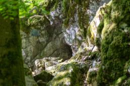 Die als Steinkammern bezeichneten Höhlenreste entstanden vor über 350 Mio. Jahren in Kalkfelsen als Teil eines mächtigen Korallenriffs. Die im Jahr 1884 entdeckte Grabkammer aus der Hallstattzeit wurde vor 2500 Jahren bis zur Zeitenwende genutzt. @ Jan Bosch© Jan Bosch